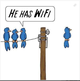 Wireless Bird